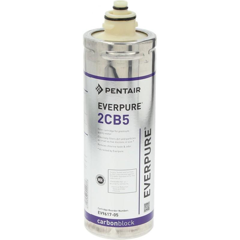 cartuccia-filtro-everpure-2cb5